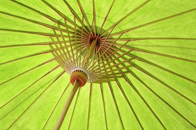 Green structure of the umbrella rod of abstract background.