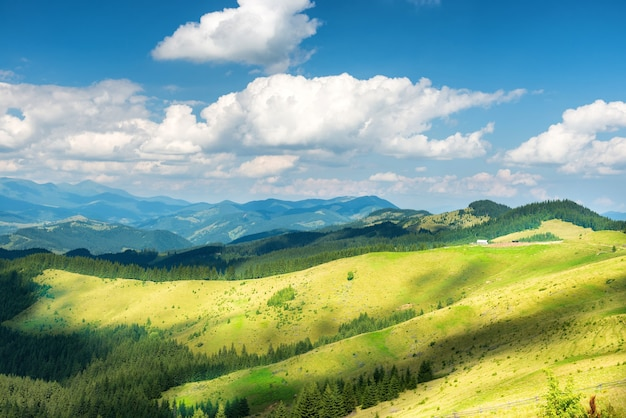 Green sunny valley in mountains and hills. nature landscape