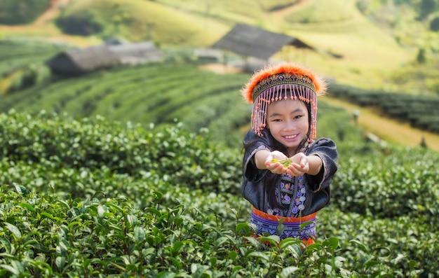 タイの女の子とタイの緑茶畑