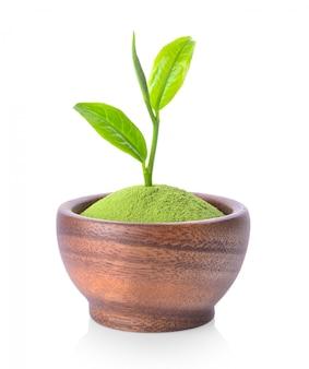 Порошок и листья зеленого чая в деревянной миске на белом пространстве