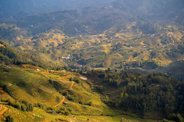 녹색 계단식 논, 베트남 북부 사파 산악 마을 근처의 전형적인 풍경