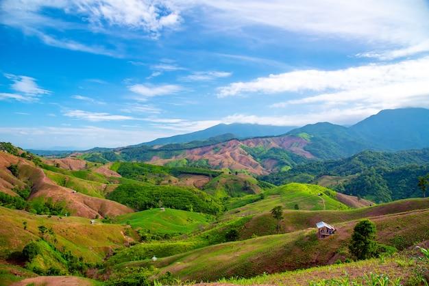 Green terraces rice field, a beautiful natural beauty on mountain in nan, khun nan rice terraces, boklua nan province, north thailand.