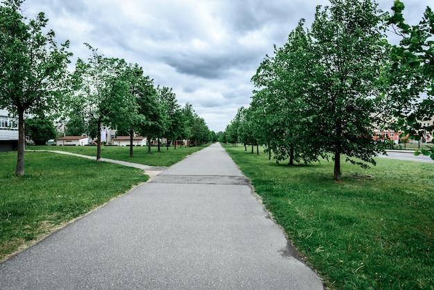 Зеленая аллея деревьев, дорожка для прогулок на свежем воздухе за городом.