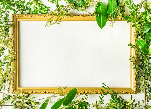Green tree branches and plants with empty frame