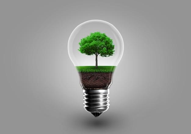 회색 전구에서 성장하는 녹색 나무