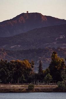 Зеленые деревья возле коричневой горы в дневное время