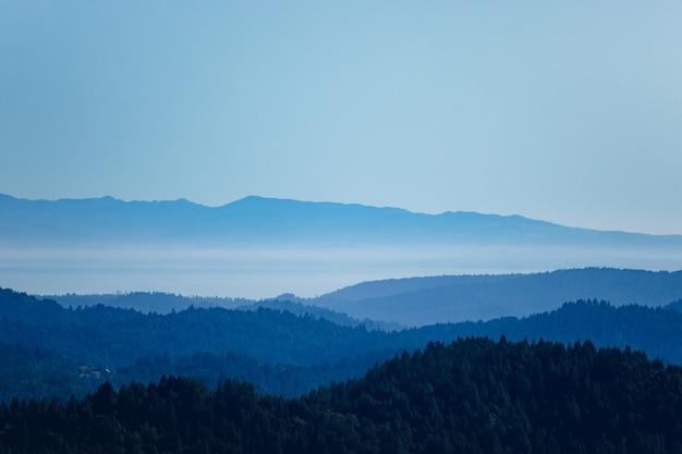 낮 동안 하얀 하늘 아래 산에 푸른 나무
