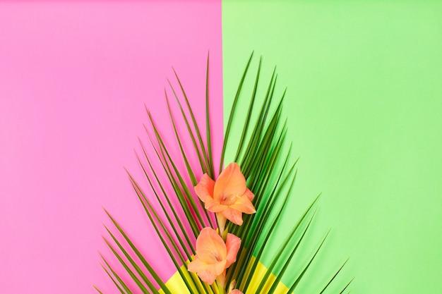 緑の熱帯の葉のヤシの木