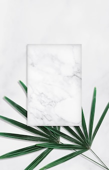 Green tropical leaves with empty marble background