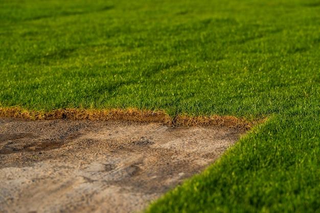 필드와 경기장을 심고 조경하기위한 정원 센터의 녹색 잔디