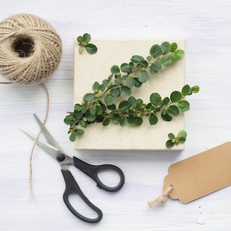 Green twig with berries; tag; scissor; and string spool on wooden textured background