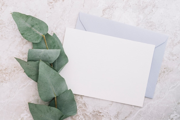 Green twig with two blank envelopes on marble top