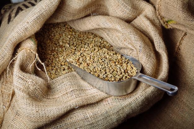 Green, unroasted coffee lies in burlap bags.