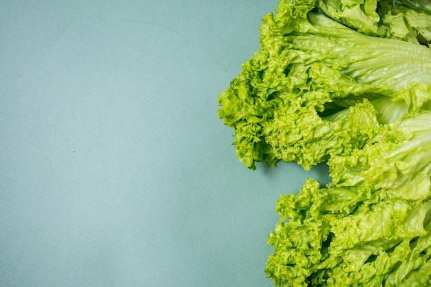 緑の背景に緑の野菜アボカドロマーノサラダグリーン上面図プラスチックなし健康的な食事の概念