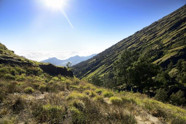 Green view on the edge senaru at mount rinjani