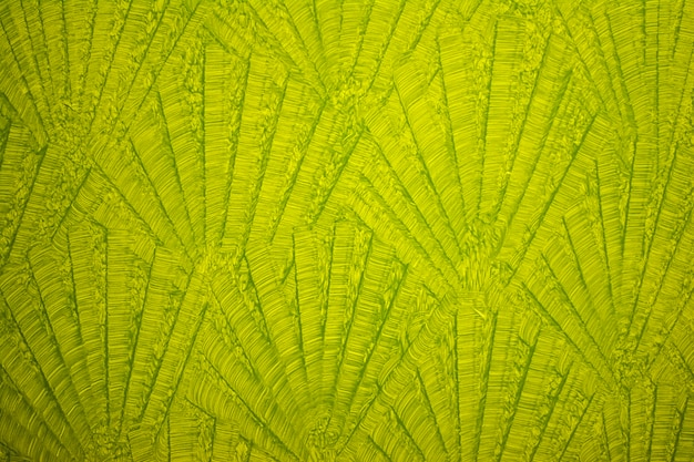 Green wall leaf textrured background