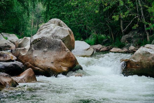 Green water in mountain brook among wild flora.