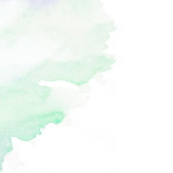 Green watercolor stain on white backdrop