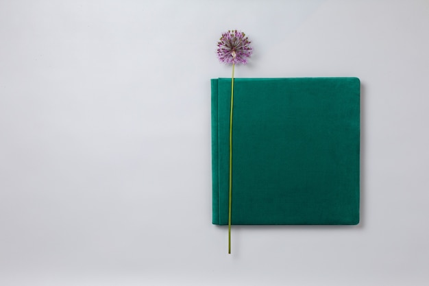 Green wedding photo album on grey background with copy space for text beautiful photo book closeup