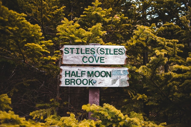 Green and white wooden signage