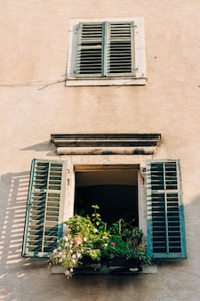 緑の窓が家の正面を閉める