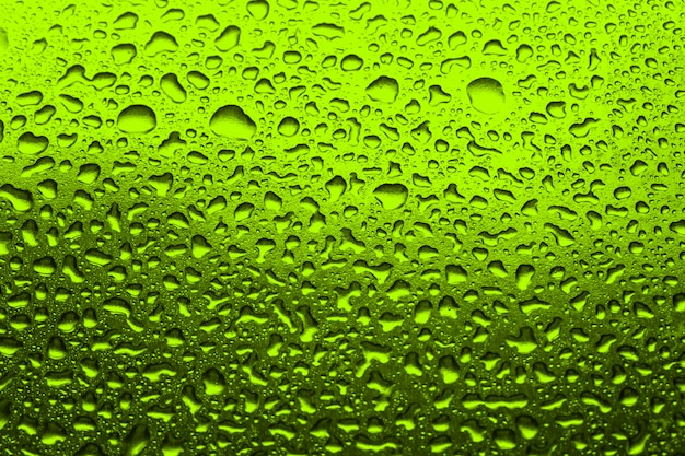 Green  with water droplets green background