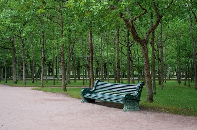 여름 공원 자연 일광에 녹색 나무 벤치