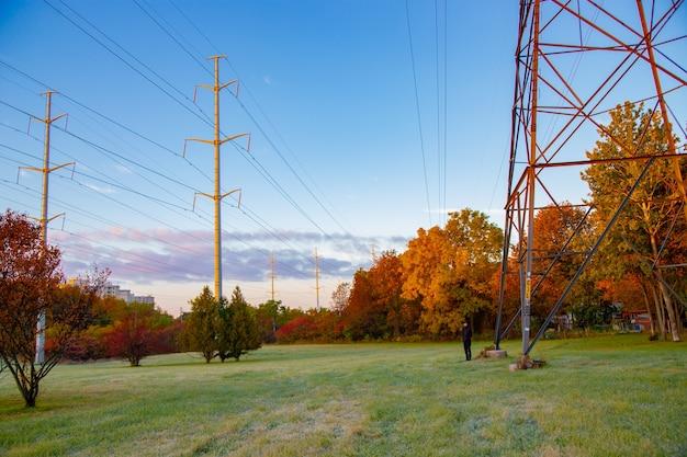 Гринфилд и электрический провод