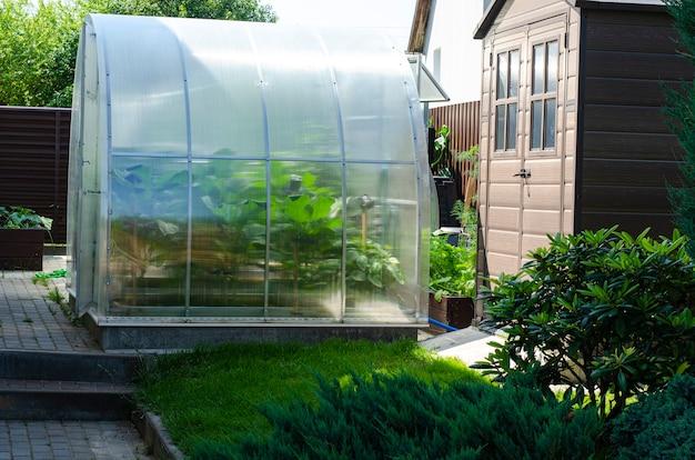 家の近くの庭で野菜を育てる温室。