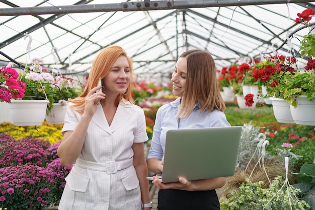 Greenhouse owner presenting flowers options to a potential customer retailer using laptop.