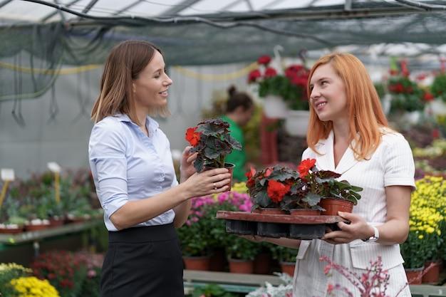 Proprietario di una serra che presenta opzioni di fiori a un potenziale rivenditore cliente.