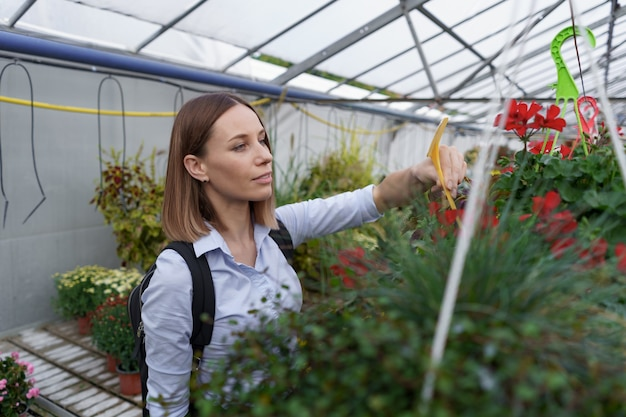 花の収穫を注意深く見ている温室の所有者