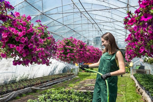Greenhouse worker in apron watering plants in her hothouse. hard work every day that creates beauty