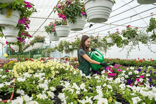 Greenhouse worker in apron watering plants in her hothouse