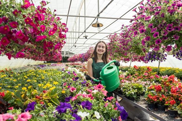 彼女の温室のエプロン散水プラントの温室労働者。美しさを生み出す毎日のハードワーク
