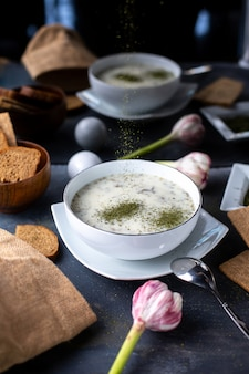 Greens dovga white light soup with different herbs on grey