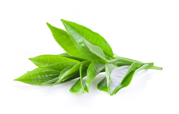 ホワイトスペースで分離された緑茶葉