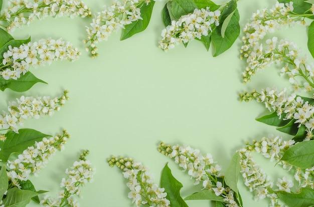 인사말 카드 배경, 복사 공간 프레임의 형태로 녹색 배경에 섬세한 벚꽃 꽃