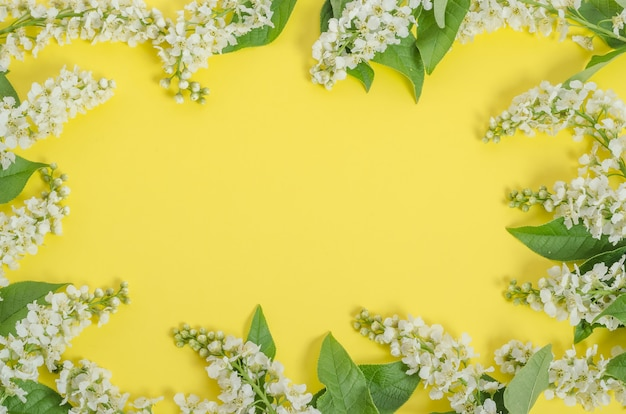 Greeting card background, delicate cherry flowers on a yellow background in the form of a frame with copy space