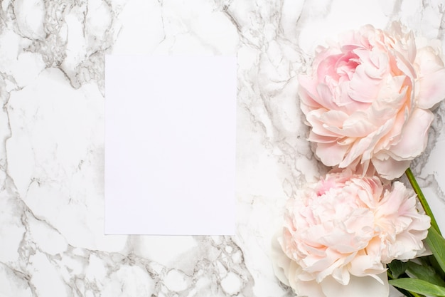 Greeting card and pink flowers peony on a on a marble surface. holiday and summer item.