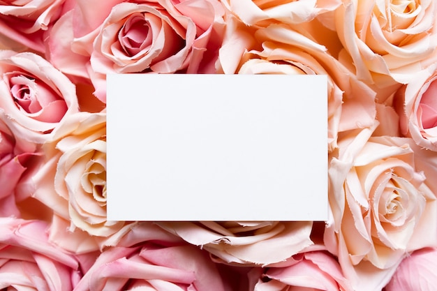 Greeting card on pink roses