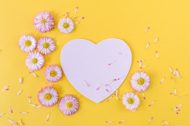 Greeting card with heart and daisies on an yellow wall.  flat lay.