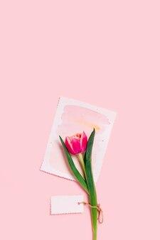 Открытка с тюльпаном