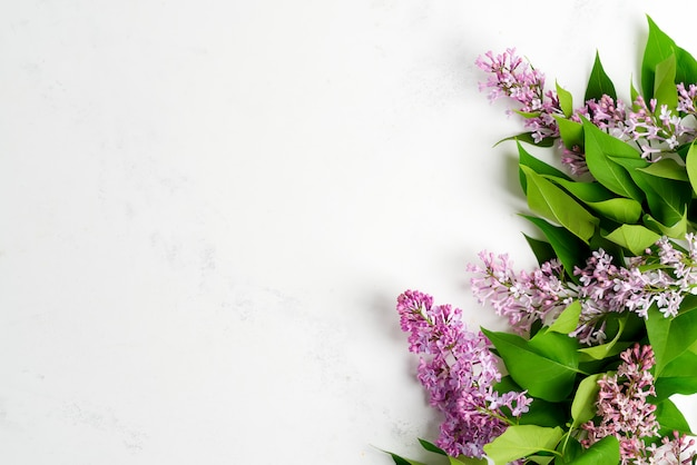 明るい灰色の大理石の背景に緑の葉と新鮮なライラック色の花からのグリーティングフレーム。上面図。