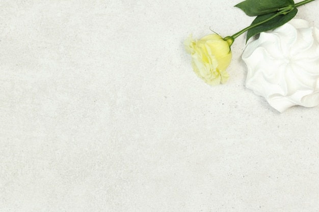 Grey background with rose and marshmallow