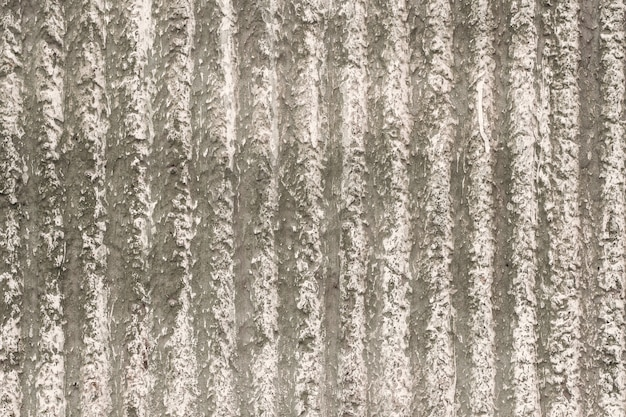 Grey-beige wall with a decorative plaster and vertical stripes.  texture for background.