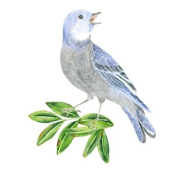 葉の上の灰色の鳥