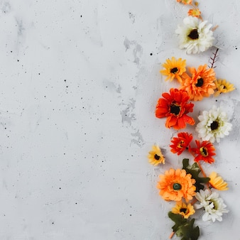 Grey concrete flat lay background with colorful autumn flower heads