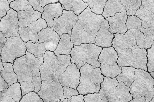 灰色の乾燥した、ひび割れ地上の地面