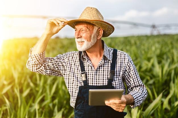 Старший агроном с седой бородой осматривает кукурузное поле и с помощью планшетного компьютера.